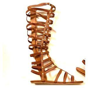 NIB⭐️ Madden Girl!!! Fab Gladiators!⭐️⭐️⭐️⭐️⭐️